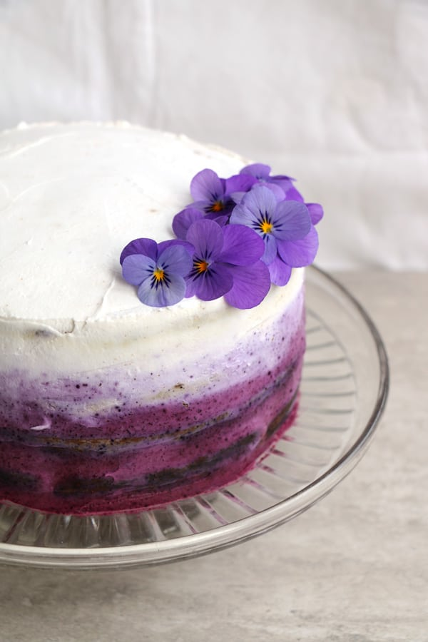 Blueberry Cake with Coconut Frosting (gluten-free & vegan)