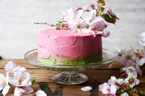 Sponge Cake With Matcha And Raspberries