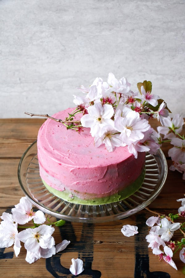 Raspberry Matcha Celebration Cake (gluten-free & vegan)