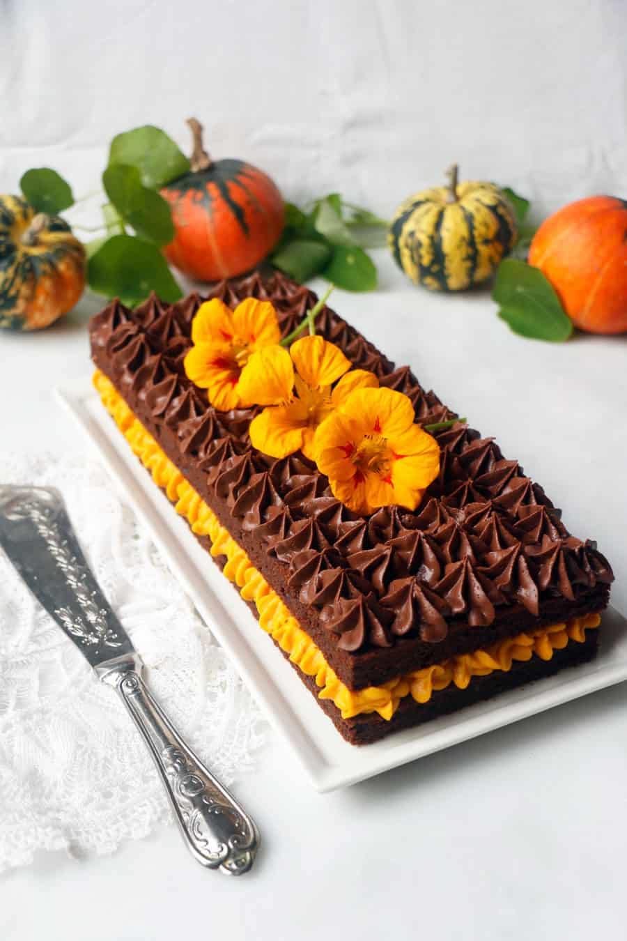 Pumpkin Chocolate Gateau (vegan & gluten-free)